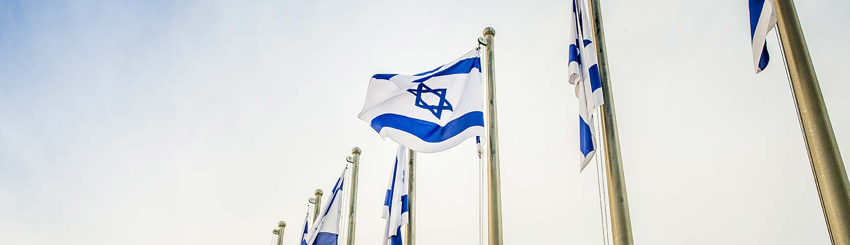 About El Shalom