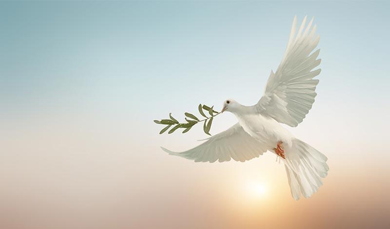 Благодатное действие благоразумия