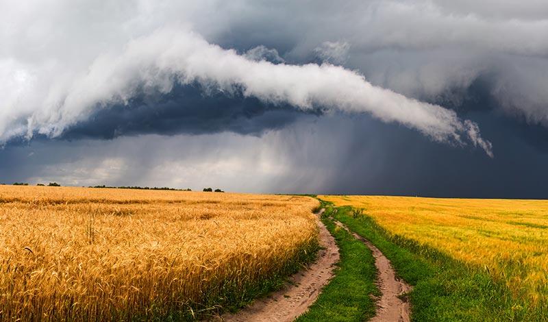 Бури в жизни